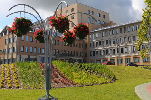 Letonya doktora eğitimi